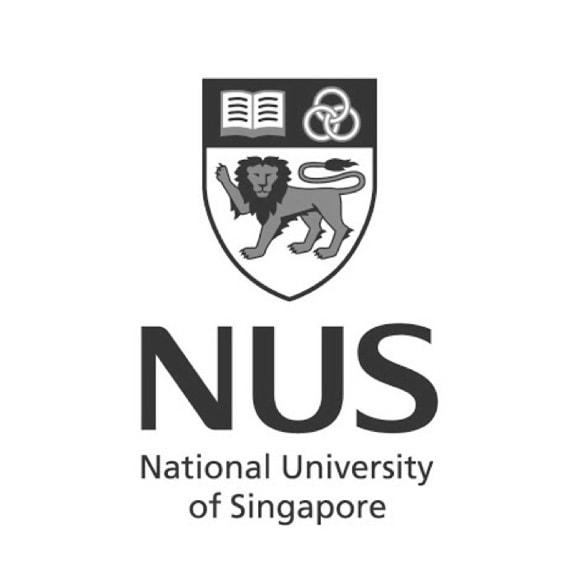 mediaone-is-the-seo-agency-for-national-university-of-singapore
