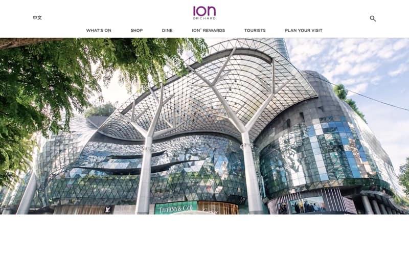 ION Orchard web design