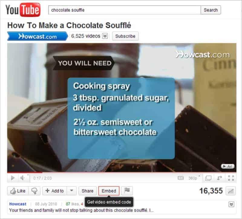 standard way of embedding youtube script
