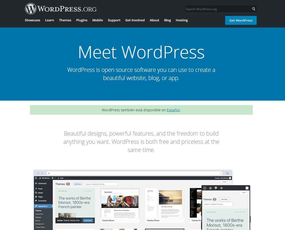 wordpress org Should I Go for a Cheap Website Design in Singapore