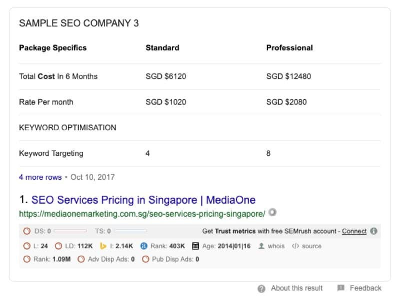 example of google snippet seo