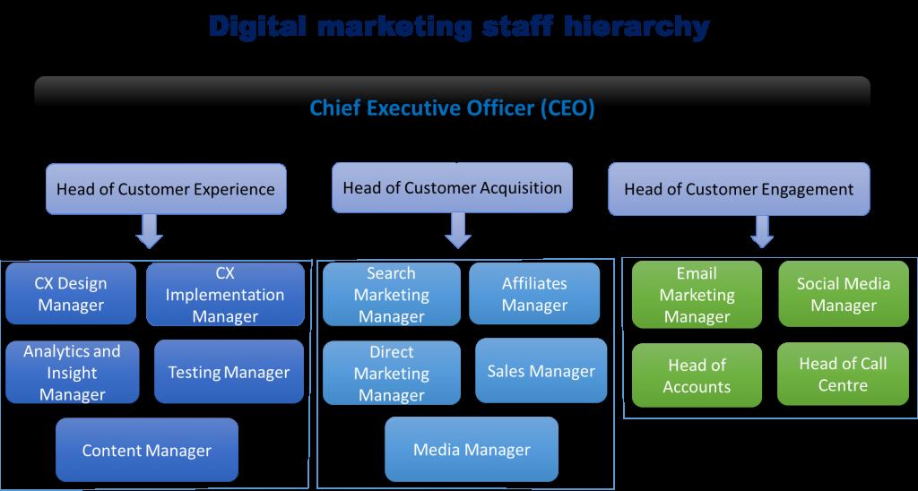 digital marketing staff hierarchy