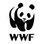 seo-for-international-non-profit-organisations