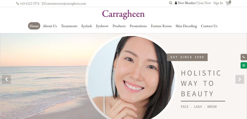 Carragheen Top Eyelash Extension In Singapore
