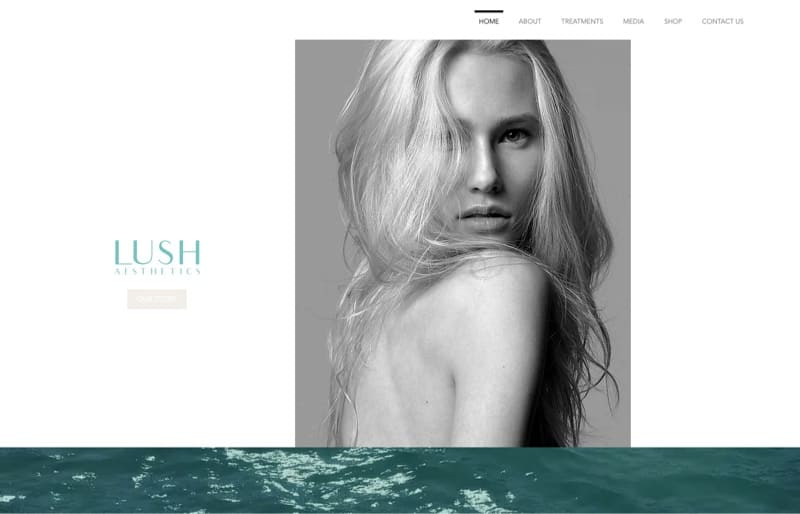 Lush Aesthetics digital marketing