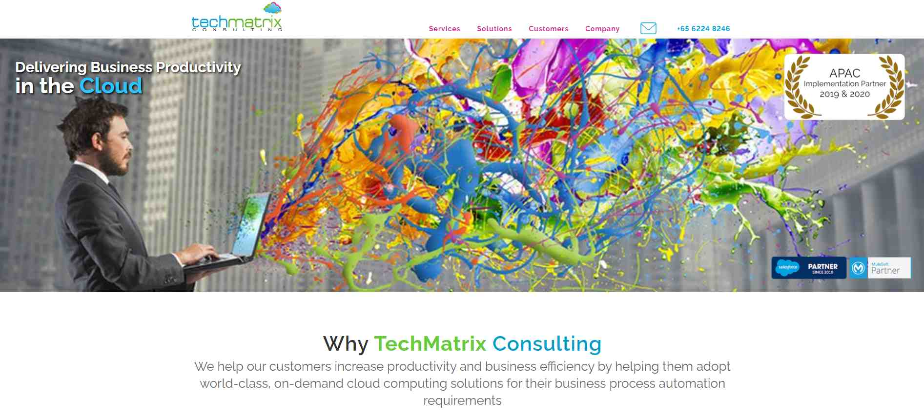 tech matrix Top Salesforce Consultants in Singapore
