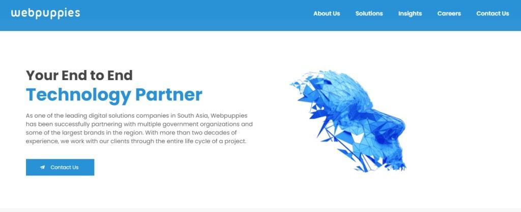 Webpuppies 10 Types Digital Marketing Agencies in Singapore