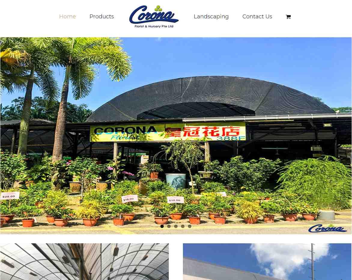 corona sg Top Plant Nurseries in Singapore
