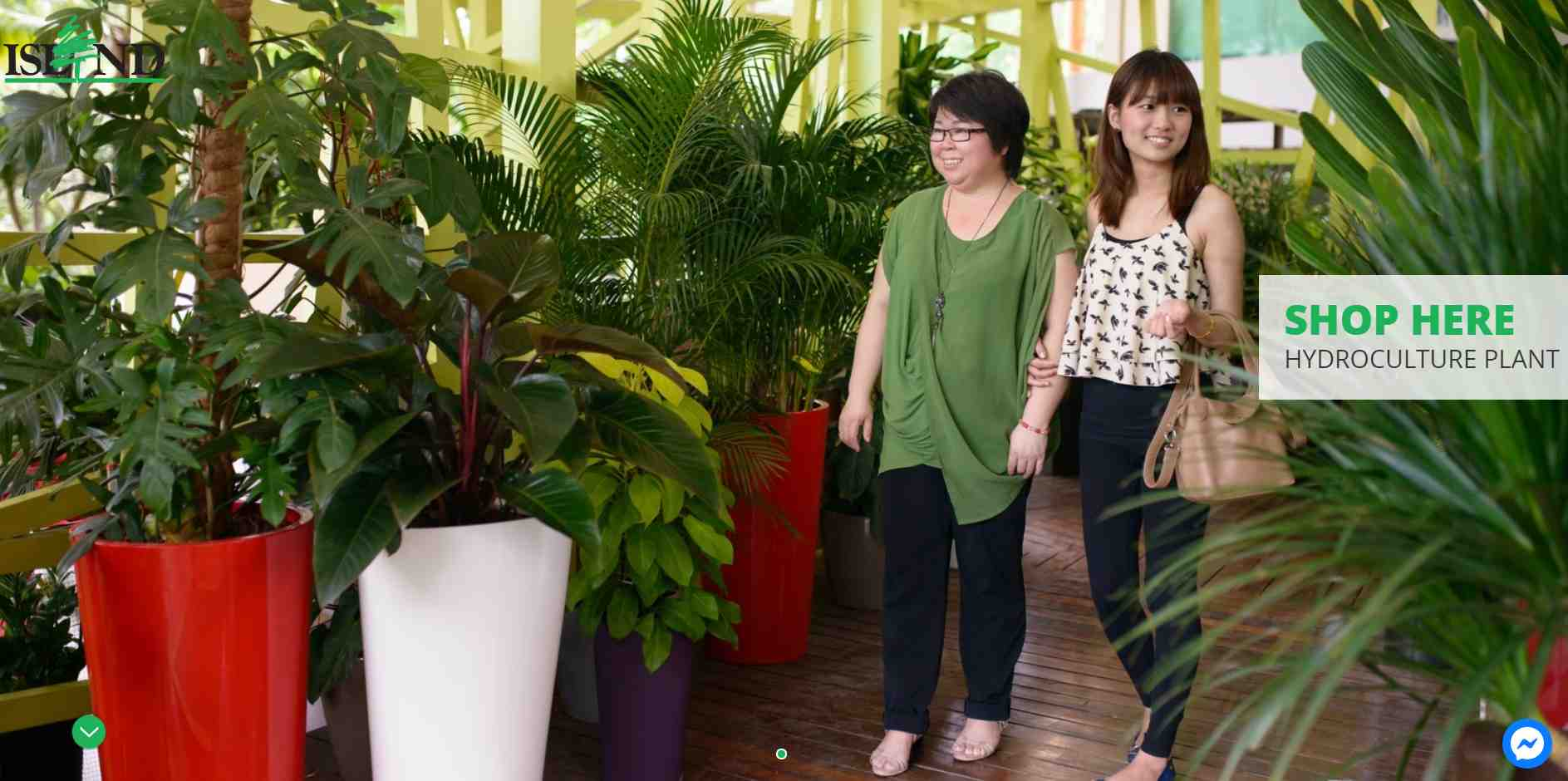island group Top Plant Nurseries in Singapore