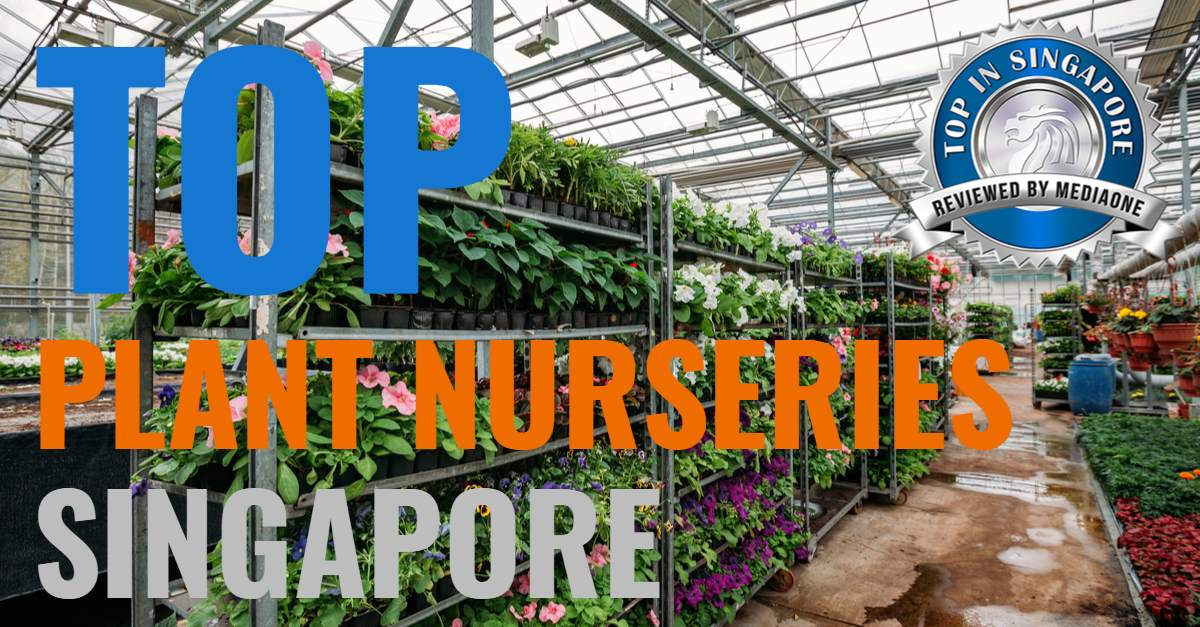 Top Plant Nurseries In Singapore