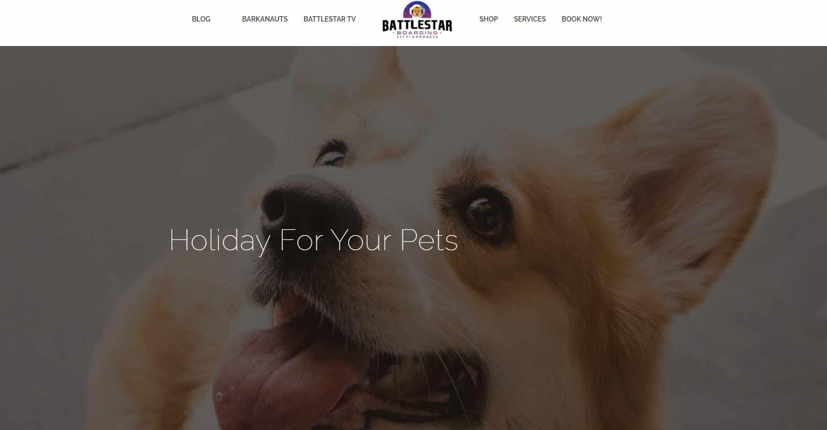 BAttlestar Boarding Top Pet Hotels in Singapore