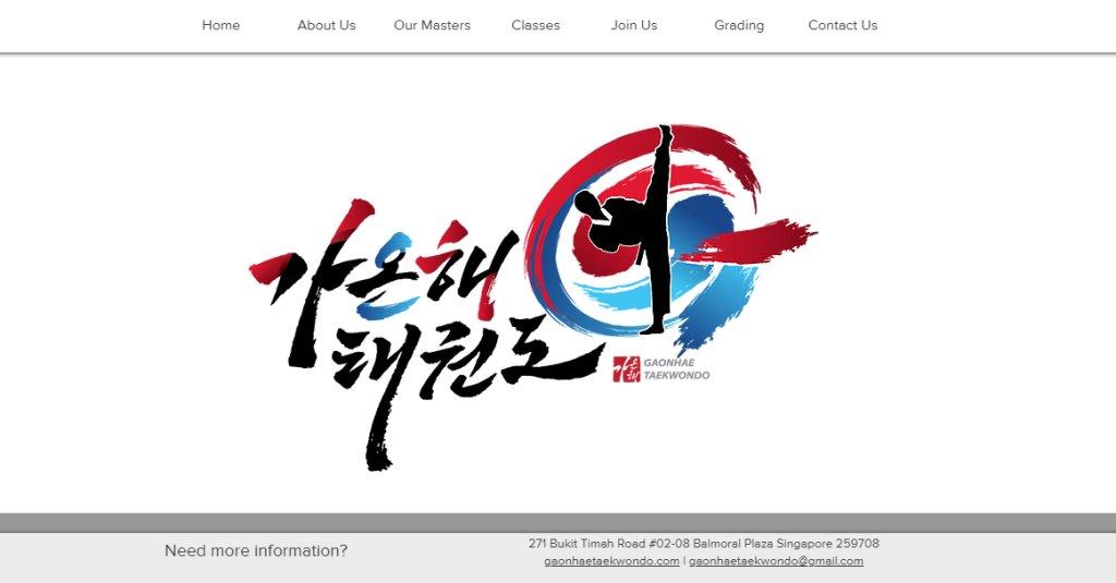 Gaonhae taekwondo Top Taekwondo Classes in Singapore