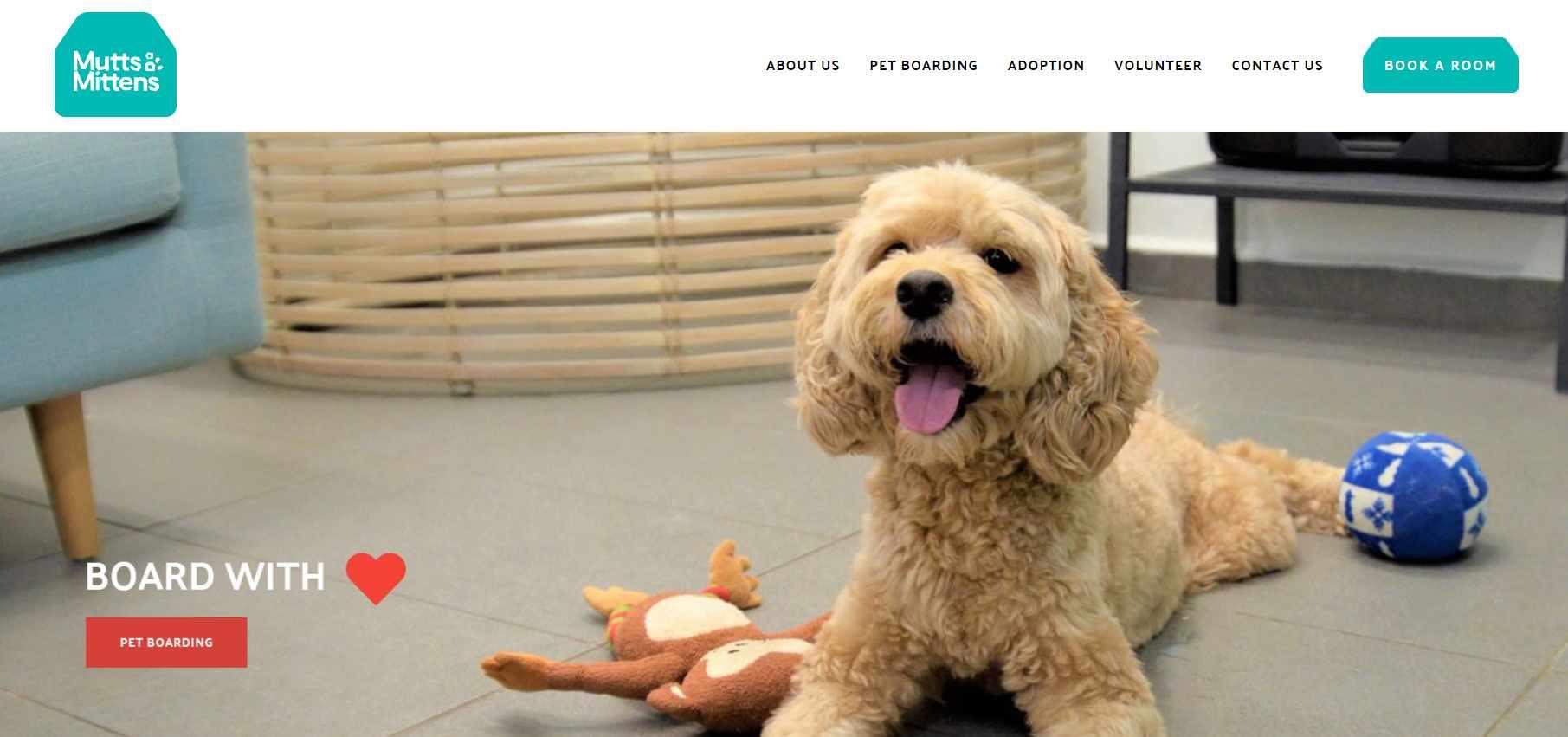 Mutt Mittens Top Pet Hotels in Singapore