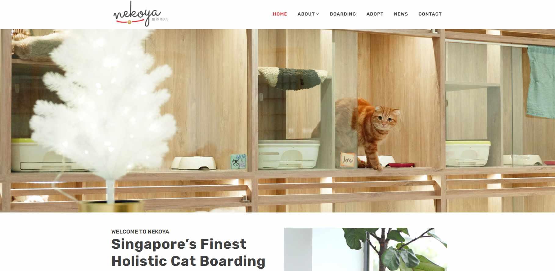 Nekoya Top Pet Hotels in Singapore