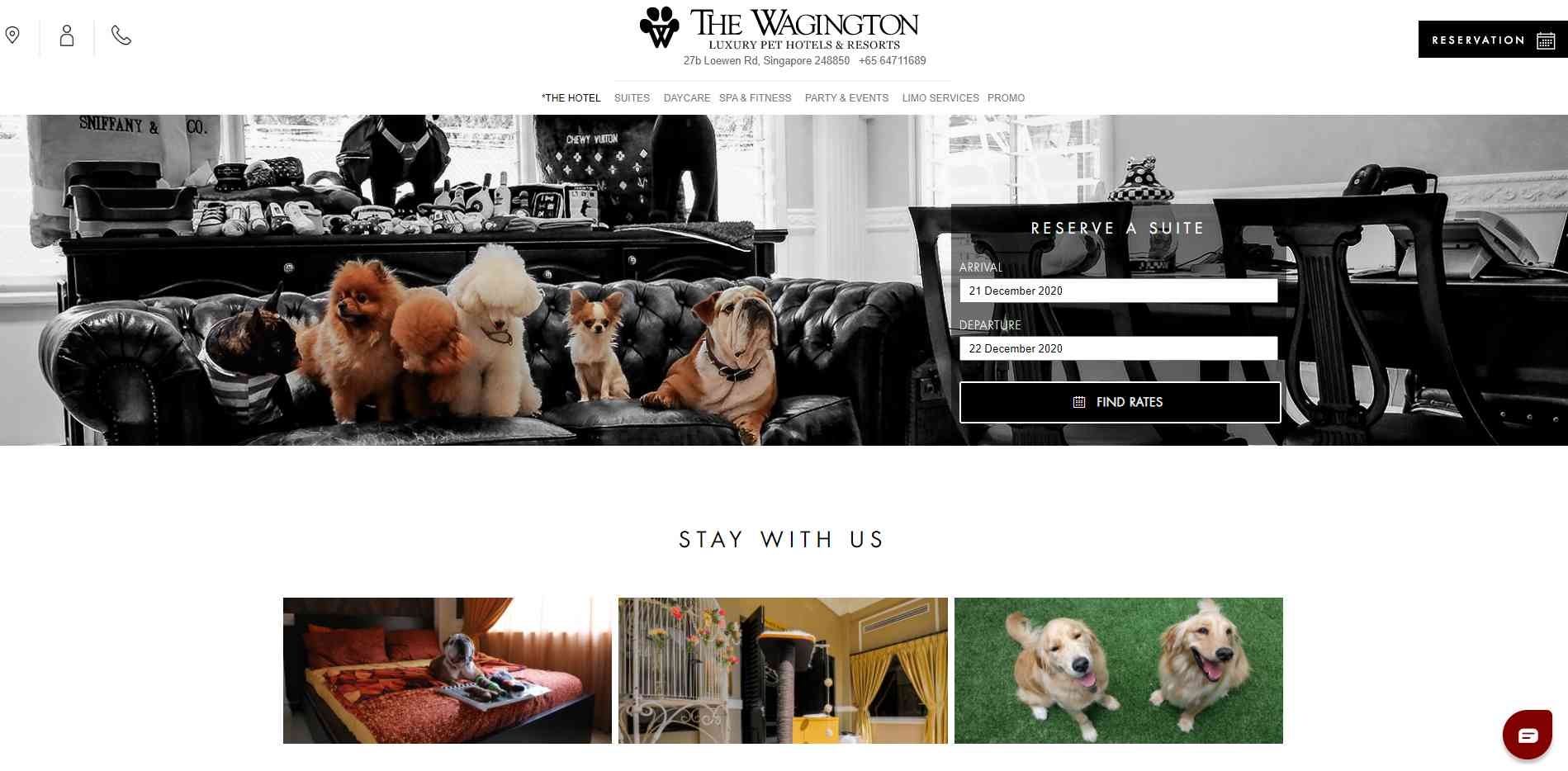 The Wagington Top Pet Hotels in Singapore