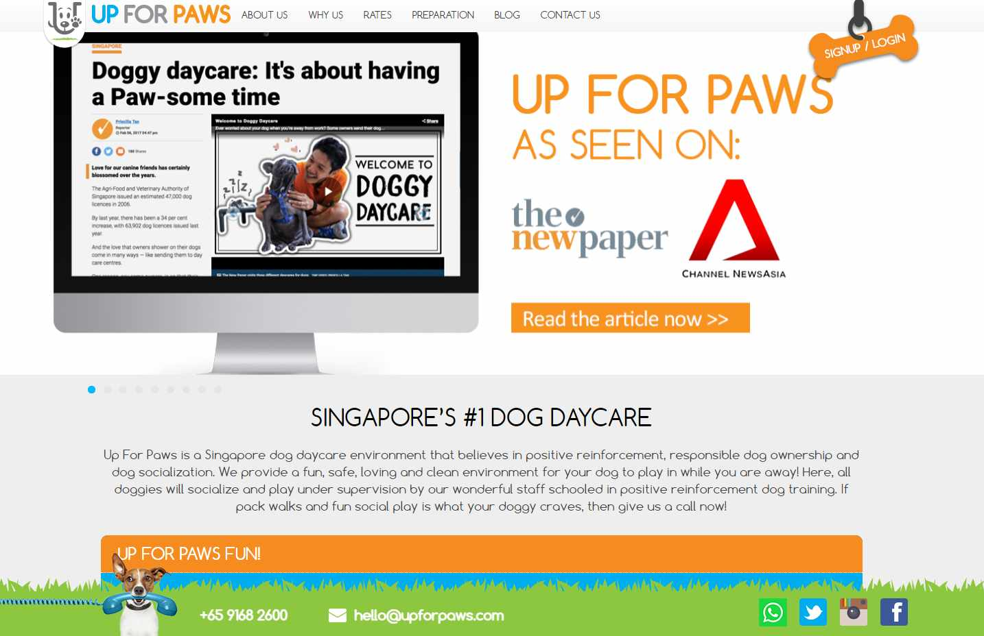 Up for Paws Top Pet Hotels in Singapore