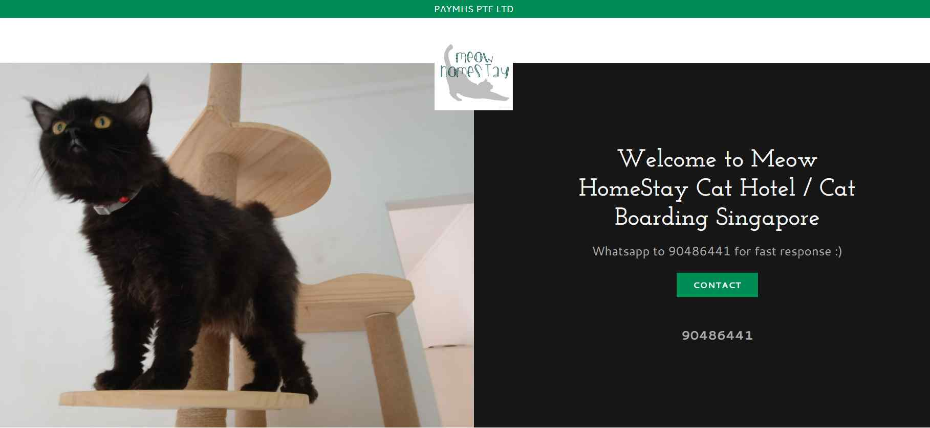 meow Homestay Top Pet Hotels in Singapore