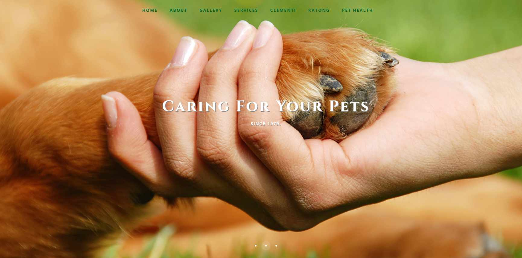 Animal Clinic Top Vet Clinics in Singapore