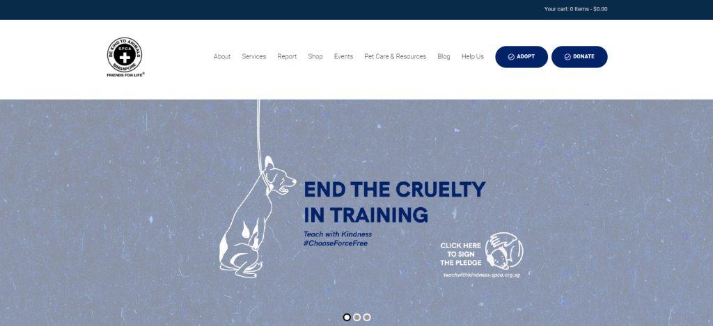 SPCA Top Volunteering Opportunities in Singapore