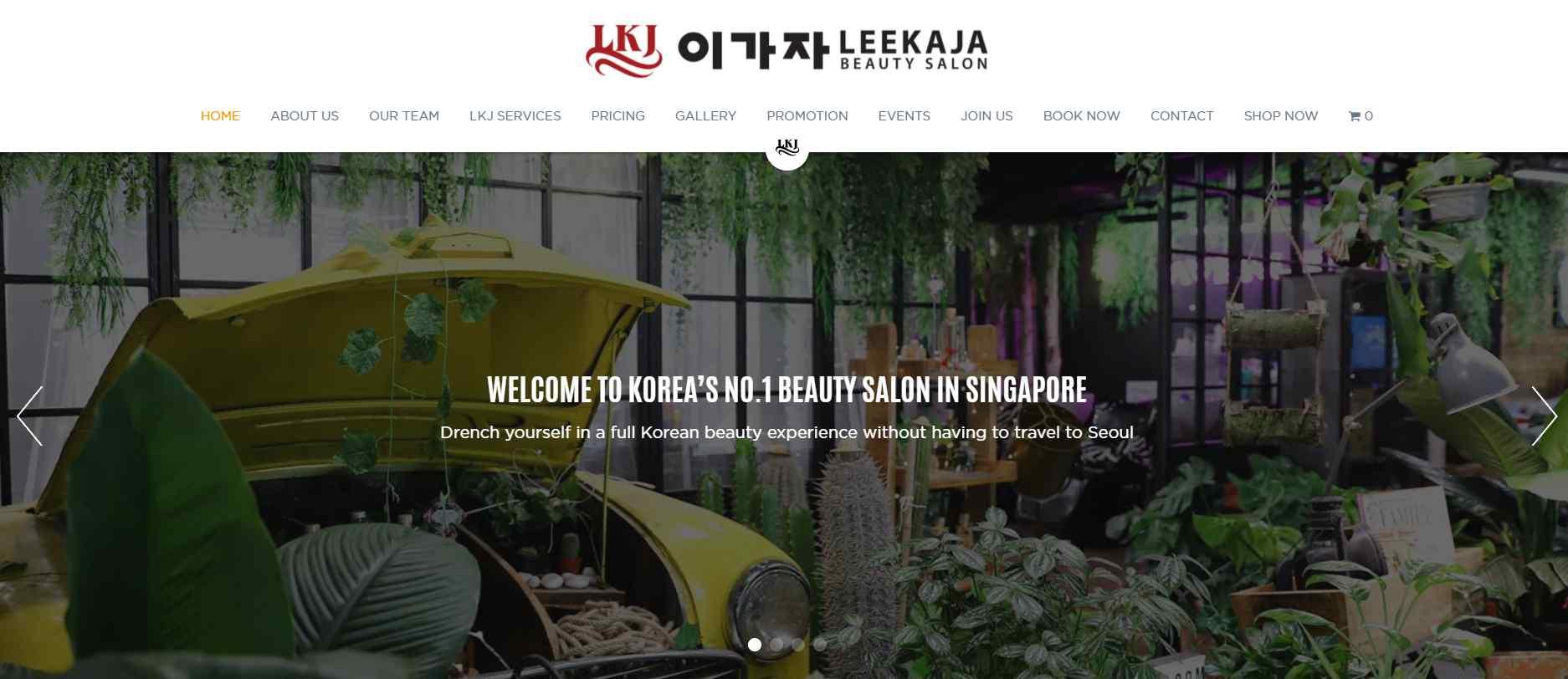 Lee kaja Top Hair Rebonding Salons in Singapore
