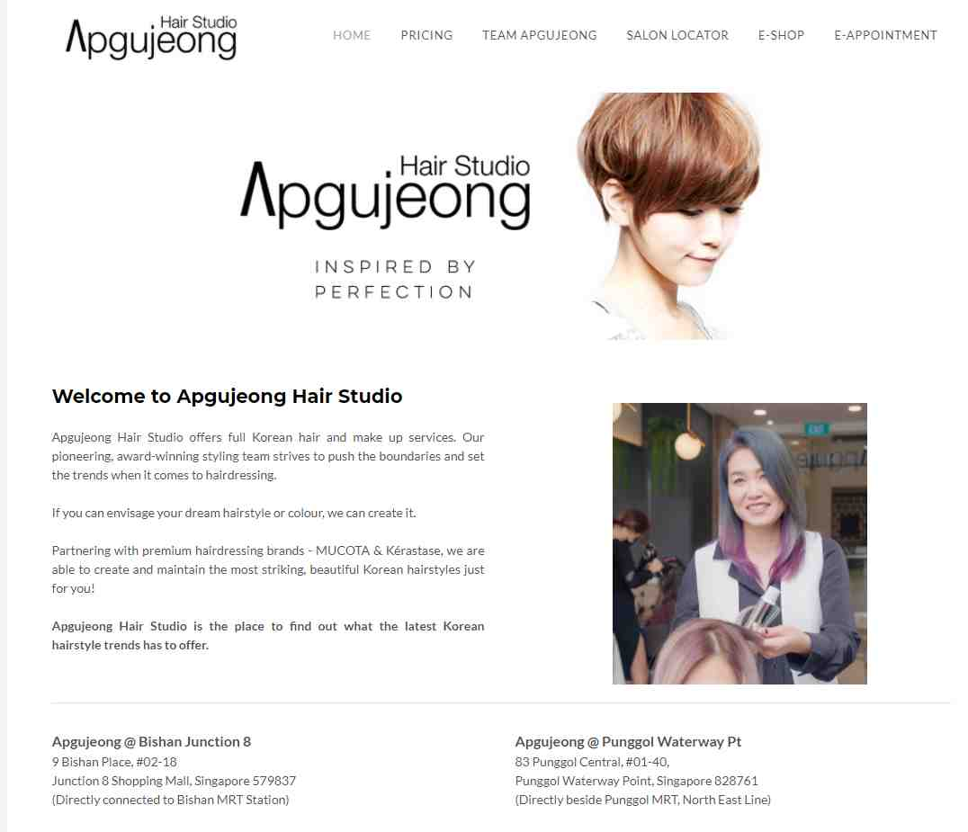 apgujeong Top Hair Treatment Salons in Singapore