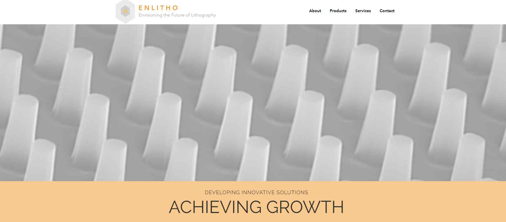 enlitho Top Nanotechnology Service Providers in Singapore