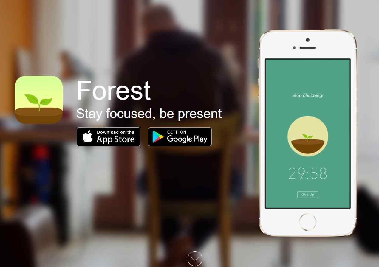 forest The Top 27 Productivity Tools For Small Businesses