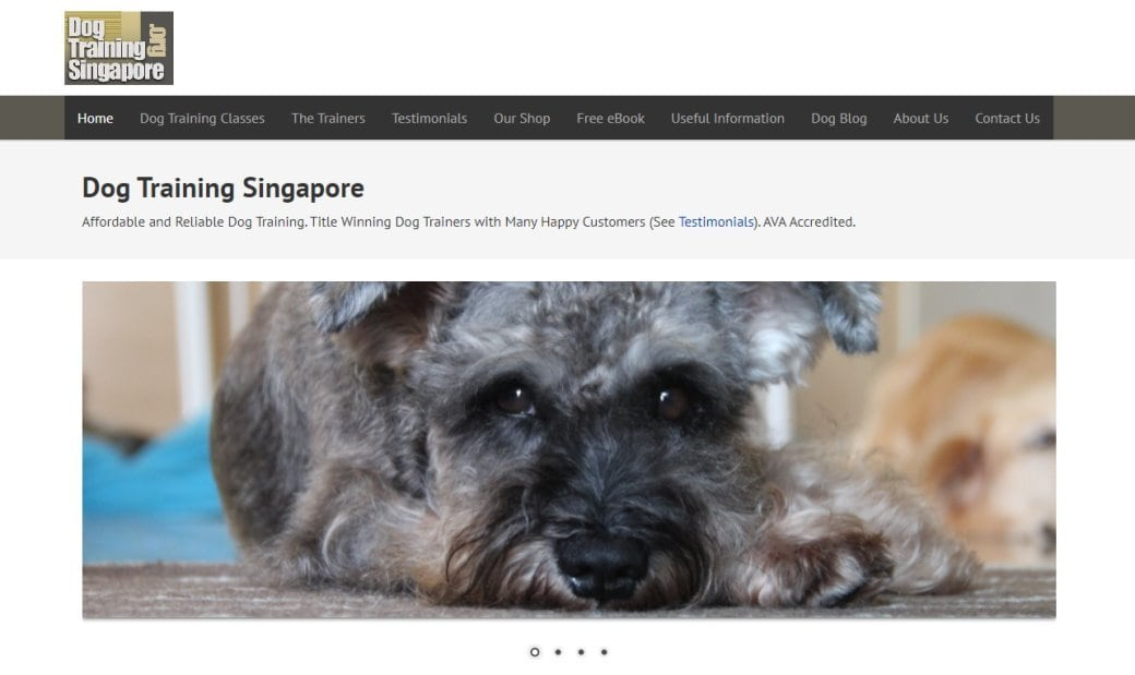 Dog Training SG Top Dog Trainers in Singapore