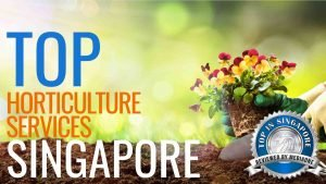 Top Horticulture Services in Singapore