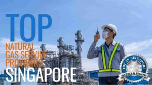 Top Natural Gas Service Providers in Singapore