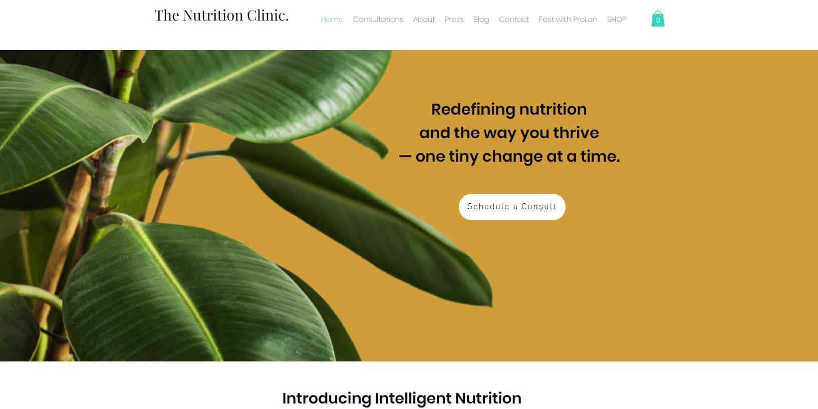 the nutrition clinic Top Dieticians in Singapore