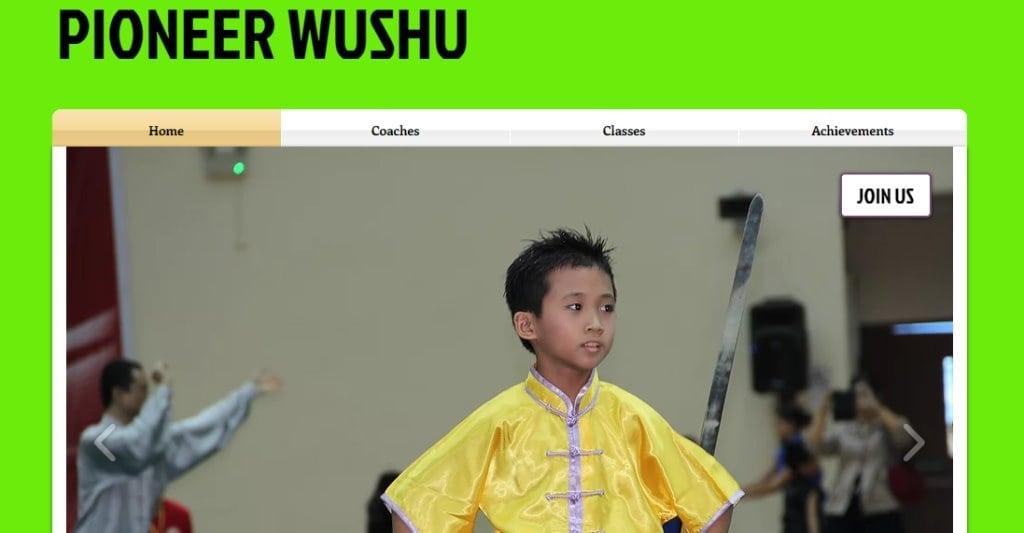 Pioneer Wushu Top Wushu Training Centres in Singapore