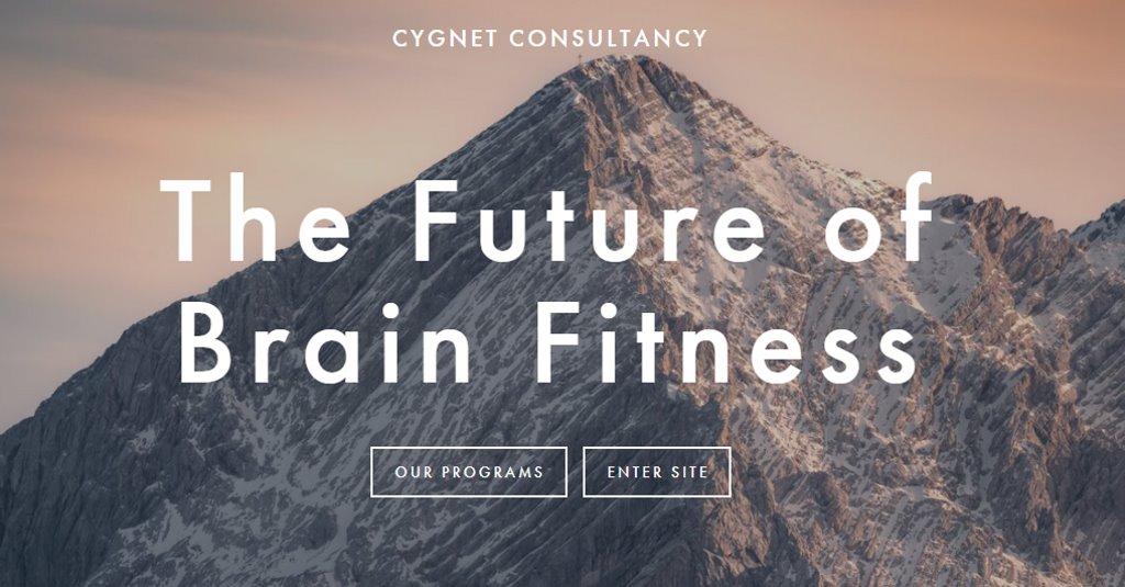Cygnet Consultancy Top Neurofeedback Services in Singapore
